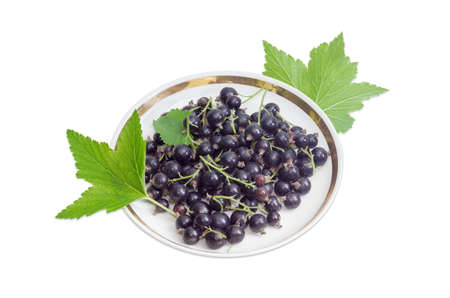 blackcurrant: Berries of fresh blackcurrant on a saucer and leaves of a currant on a light background