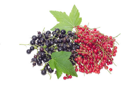 redcurrant: Pile of a fresh blackcurrant and redcurrant with leaves on a light background