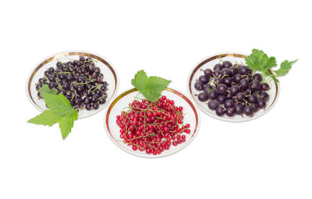 redcurrant: Fresh blackcurrant, redcurrant and jostaberry with leaves on a three saucers on a light background Stock Photo