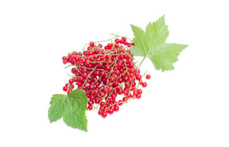 redcurrant: Pile of a fresh redcurrant and leaves on a light background Stock Photo