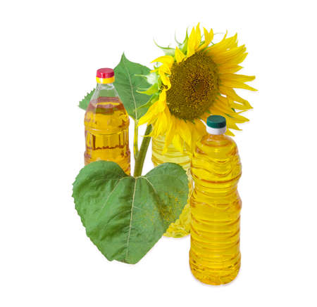sunflower oil: Three plastic bottles of sunflower oil of different variety and sunflower stalk with flower and leaves on a light background Stock Photo
