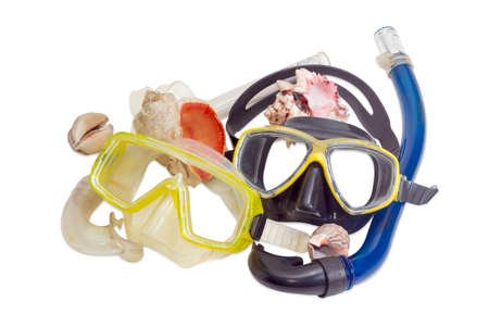 freediving: Two different diving masks with snorkels and several different sea shells on a light background