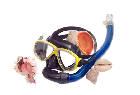 freediving: Black and yellow diving mask with blue snorkel and several different sea shells on a light background Stock Photo