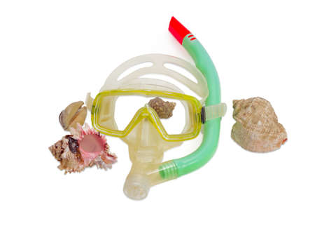 sports shell: Yellow and white diving mask with green snorkel and several different sea shells on a light background Stock Photo
