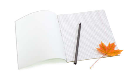 legal pad: Open the first page school exercise book with sheets of squared paper, pencil and one yellowed maple leaf on a light background Stock Photo
