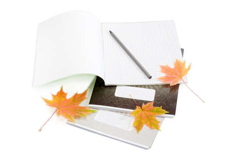 legal pad: Open the first page school exercise book with sheets of squared paper, pencil, other exercise books and several yellowed maple leaves on a light background