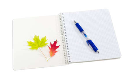 Open on the first page school exercise book with spiral binding and sheets of squared paper, blue pen and two yellow and red leaves on a light background