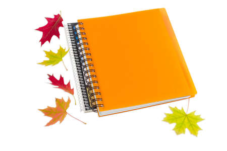 legal pad: Two paper notebooks with spiral binding and few red and yellow autumn leaves on a light background