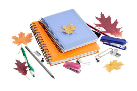 Two paper notebooks with yellow and blue cover and spiral binding, ball pen, pencils, other stationery and a few autumn leaves on a light background.