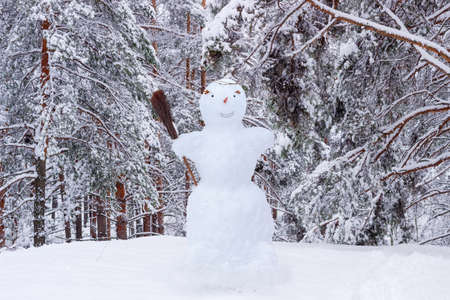 carrot tree: Snowman with broom in the glade on the background of snow-covered pine forest