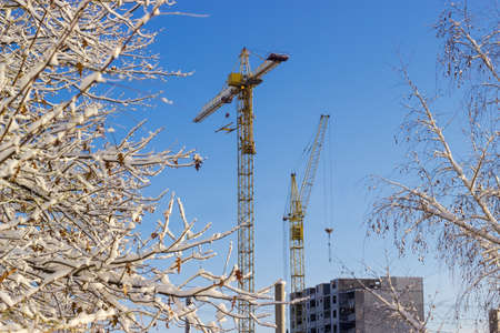 latticed: Two different tower cranes with latticed boom against the background of tree branches covered snow, sky and construction of multistory residential building