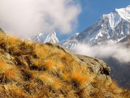 Mountain range with peaks covered with hanging glaciers partly shrouded in clouds with a mountain slope covered with the withered grass in the foreground in the Himalayas
