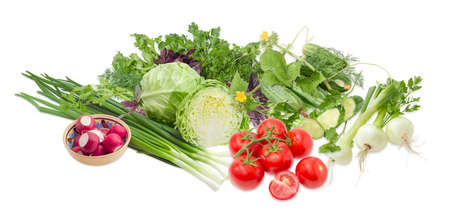 potherb: Pile of different early vegetables, like young white cabbage, tomatoes, onion bulbs, green onion, red radish, cucumbers and potherb, like parsley, dill, basil, cilantro on a light background