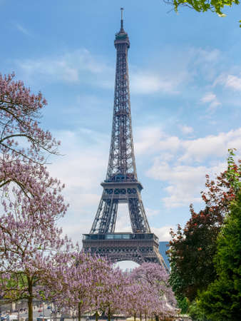 popularity: View of the Eiffel Tower among flowering trees from the Trocadero Square in spring. Paris, France.