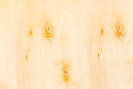 hardwoods: Background of the surface of the birch rotary cut veneer with several knots closeup