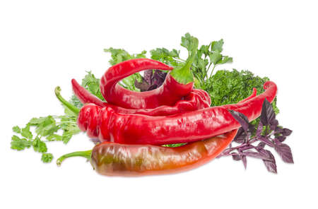 potherb: Several fresh ripe red peppers chili on a background of the bundle of basil, parsley and cilantro on a light background