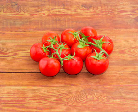 nightshade: Two branches of the ripe red tomatoes with droplets of dew on a surface of the old wooden planks
