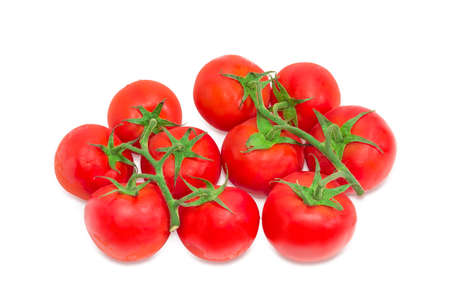 Two branches of the ripe red tomatoes with droplets of dew on a light background