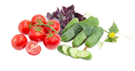 tendrils: One cut tomato and branch of the tomatoes, one sliced and several whole cucumbers, creeping cucumber stem with the leaves and flower against of the purple basil on a light background