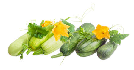 Several fresh vegetable marrows and zucchini with stalks, leaves, tendrils and flowers on a light background