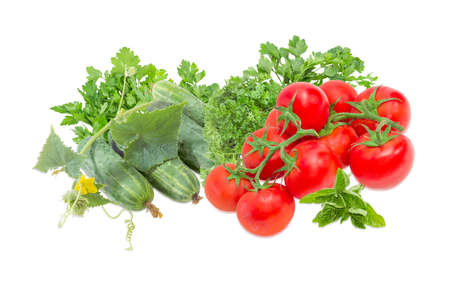 nightshade: Several fresh cucumbers with creeping stem with the leaves and flower, branches of the red tomatoes and bundles of the parsley and twigs of the green basil on a light background Stock Photo