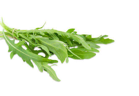 potherb: Bunch of the fresh green leaves of the arugula closeup on a light background  Stock Photo