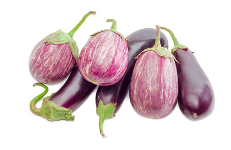 nightshade: Pile of the conventional purple eggplants and Graffiti eggplants on a light background