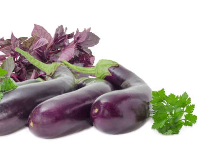 nightshade: Background of the several fresh eggplants with bundles of the purple basil and parsley on a light background