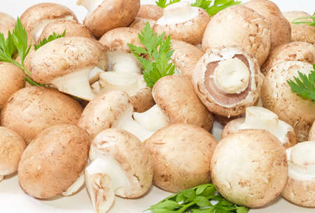 potherb: Background of the fresh whole uncooked button mushrooms with several parsley twigs Stock Photo