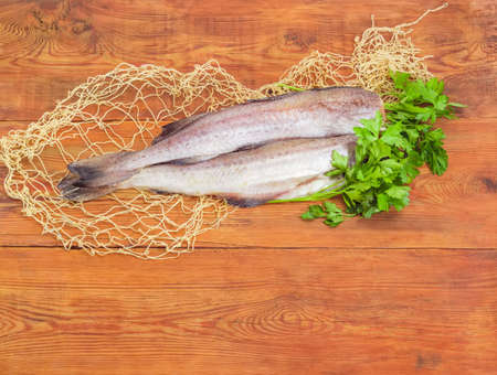 Two uncooked carcasses of the red hake without of head and bunch of parsley on the fishing net on a surface of the old wooden planks