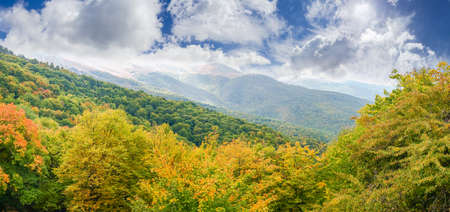Panorama of the mountain slope with autumn forest on a foreground on a background of the sky with clouds