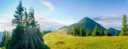 Panorama of the glade on mountain crest with forest on both sides on the background of a peak and sky in Eastern Carpathians at summer morning
