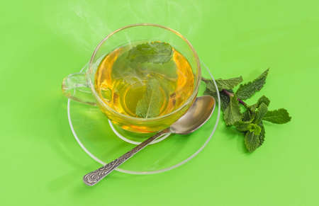 Glass cup of tea with mint leaves and tea spoon on the glass saucer and twig of fresh mint separately beside on a green background