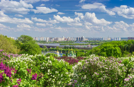 Panorama of a plantation of flowering lilac different colors on a background of domes of the Christian monastery, river, city building and sky with clouds   Stock Photo