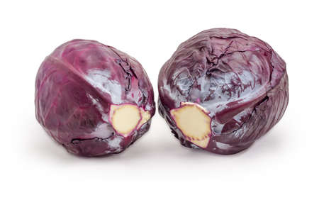 Two whole heads of the fresh red cabbage on a white background