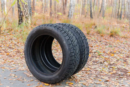 Two winter car tires with asymmetric aggressive tread on a blurred background of the autumn forest
