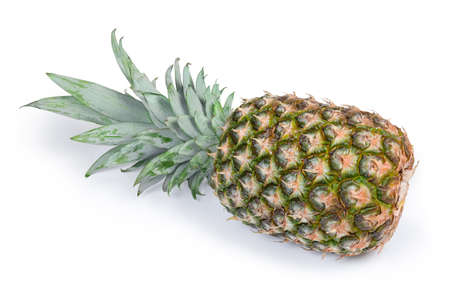 Large whole fresh ripe pineapple with tuft of stiff leaves lies on its side on a white background