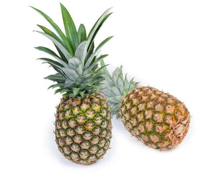 Two large whole fresh ripe pineapples with tufts of stiff leaves on a white background