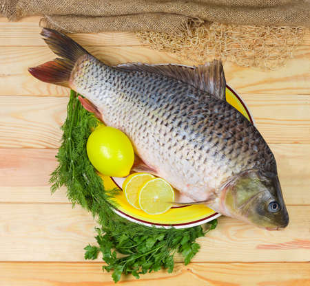 Top view of big dish with raw gutted carp with peeled scales and prepared for its cooking and partly sliced lemons, greens on a light colored wooden rustic table