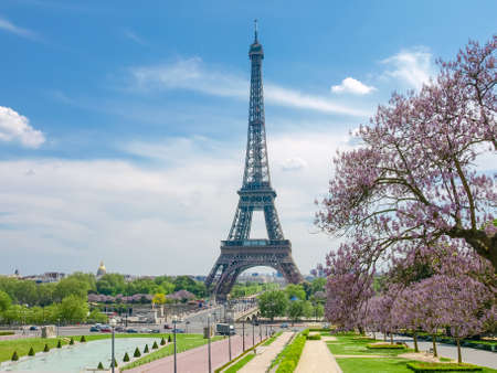 View of the Eiffel Tower from the Trocadero Square with pool and blossoming trees in the foreground in Paris