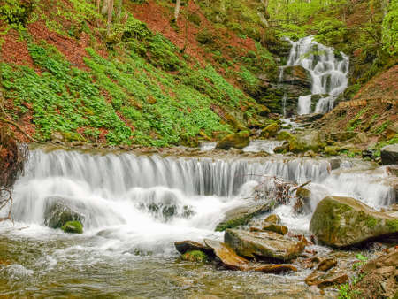 Multi-level water cascade of waterfall Shypit in beech forest in the Carpathian mountains near the village Pylypets in early spring, Ukraine