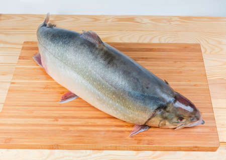 Whole carcass of the fresh uncooked arctic char on the bamboo cutting board on a rustic table
