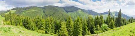Mountain ridge in the Carpathian Mountains covered with forest. Panoramic view from the opposite ridge
