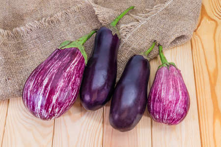Ripe purple conventional and striped eggplants, so-called graffiti eggplant, on the wooden rustic table with burlap, top view