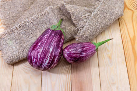 Two ripe mottled striped purple eggplants, so-called graffiti eggplant, on the wooden rustic table with burlap, top view