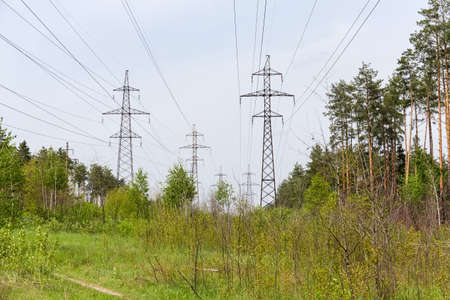 Several overhead power lines with steel lattice structures transmission towers and reinforced concrete poles among of the forest in springtime