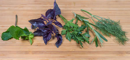Single stems of fresh purple basil, dill, rosemary, parsley and mint on the bamboo cutting board, panoranic view Stock Photo