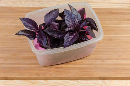 Twigs of the fresh purple basil in open plastic container on the wooden bamboo cutting board