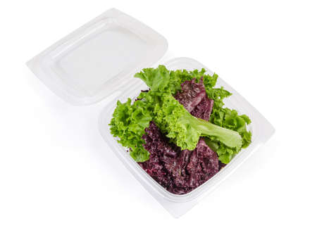 Lettuce leaves two types - red Lollo Rosso and pale green Lollo Bionda in the open transparent plastic container on a white background, top view Imagens