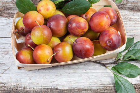 Fresh ripe plums with twigs of plum tree with leaves in small wooden basket on the old cracked wooden surface, top view